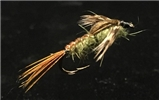 Click to view BWO Nymph by Jeffery Ripple!