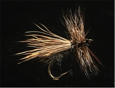 Down Wing Caddis