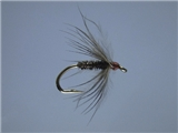 Black Gnat Soft Hackle