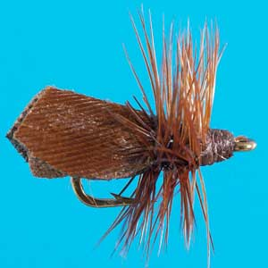 Click to view Safet's Winter Caddis!